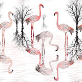 Pattern with group of pink flamingo Royalty Free Stock Images