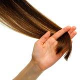 Pattern of hair Stock Image