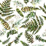 Forest fern leaves ornament pattern Stock Photo