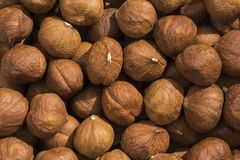 Pattern of Hazelnuts. Closeup view and pattern of some Hazelnut Royalty Free Stock Photography