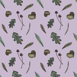 Pattern of herbs and leaves royalty free illustration