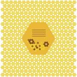Pattern of the hexagon honeycombs Stock Photos