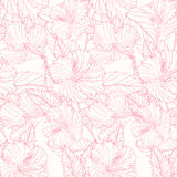 Pattern with hibiscus. Seamless pattern with pink hibiscus Stock Image