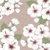 Pattern with hibiscus flowers. Vector seamless tropical pattern with hibiscus flowers Stock Image