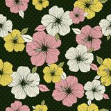 Pattern of hibiscus on green b Royalty Free Stock Image