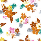 Pattern of the Hibiscus Stock Image