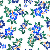 Pattern of the Hibiscus. I drew Hibiscus for a design Stock Photography
