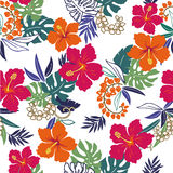 Pattern of the Hibiscus. I drew Hibiscus for a design Stock Image