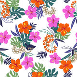 Pattern of the Hibiscus. I drew Hibiscus for a design Royalty Free Stock Photography