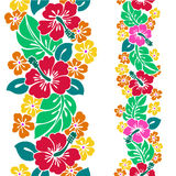 Pattern of the Hibiscus. I drew Hibiscus for a design Stock Images