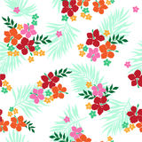 Pattern of the Hibiscus Royalty Free Stock Images