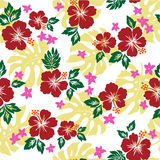 Pattern of the Hibiscus Royalty Free Stock Photos