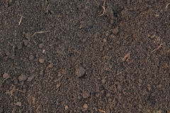 Pattern of humus soil Stock Photo