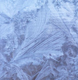 Pattern of ice crystals. Pattern of blue ice crystals that looks like a leaf Stock Images