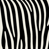 Pattern. Imitation print of skin of zebra. Black stripes on gray background. Royalty Free Stock Image