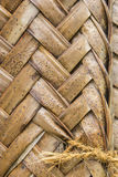 Pattern of interweaving brown palm leaves Stock Photography