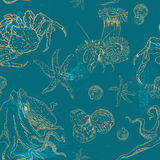 Pattern with invertebrates organisms Stock Image