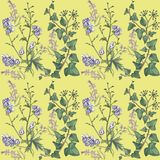 Pattern with ivy and flowers. stock illustration