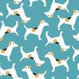 Pattern with jack russell terrier Stock Photos