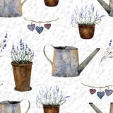 Pattern lavanda2 Stock Photos