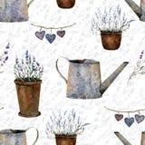Pattern lavanda2 Stock Photos