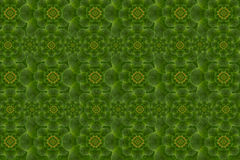 Pattern  from leaf Royalty Free Stock Photography