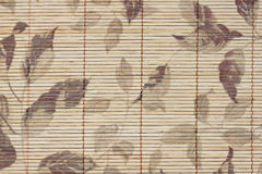 Pattern leaves on bamboo wood of background. Stock Photography