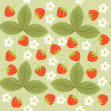 Pattern, the leaves and berries, seamless texture Royalty Free Stock Image
