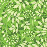 Pattern from leaves and bulbes Stock Image