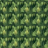 Pattern with leaves of different shapes vector illustration