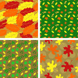 Pattern with leaves. Four seamless pattern with autumn leaves Royalty Free Stock Photos