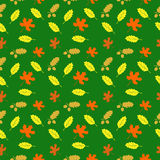 Pattern with leaves. Pattern with maple leaves and oak leaves with acorns Royalty Free Stock Photos