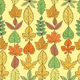 Pattern Leaves Royalty Free Stock Photos