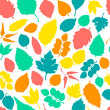 Pattern with leaves. Royalty Free Stock Photo