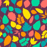 Pattern with leaves. Stock Image