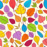 Pattern with leaves. Stock Images