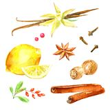 Pattern of a lemon, cinnamon, vanilla,badian, cloves, star anise. Ingredients for mulled wine.Watercolor hand drawn illustration.White background Stock Photography