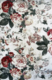 Pattern of light floral tapestry Royalty Free Stock Image