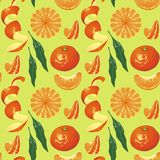 Pattern on light green background Mandarin Stock Photography