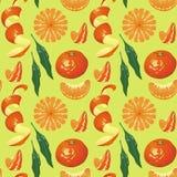 Pattern on light green background Mandarin Stock Photography