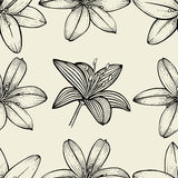 Pattern of Lily flowers Stock Image