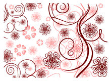 Pattern with lines and flowers Royalty Free Stock Photo