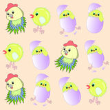 chicken pattern little in easter egg. Magic cartoonish yellow little chicken in easter  egg pattern Royalty Free Stock Photos