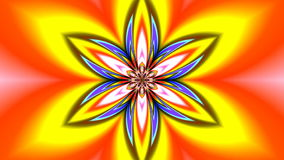 Pattern - a lotus stock footage