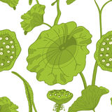 Pattern with lotus. Seamless pattern with lotus, hand draw  illustration Stock Photo