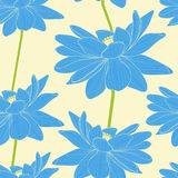 Pattern with lotus. Seamless pattern with lotus, hand draw  illustration Stock Image