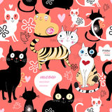 Pattern in love with a cat Royalty Free Stock Photo