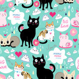 Pattern lovers cats Stock Image