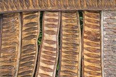 Pattern made from dried  Caesalpinia pulcherrima sheath tree Stock Photo