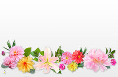 Pattern Made from Summer Pink Flowers and Green Leaves on Light Royalty Free Stock Photo